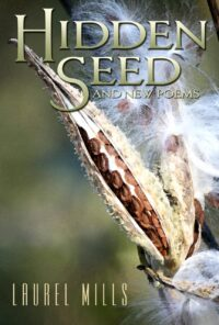 Hidden Seed, by Laurel Mills