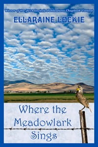 WheretheMeadowlark